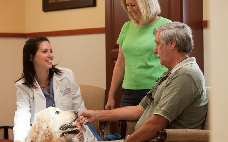 Karri Miller, DVM, MLAS, DACVIM from Veterinary Healthcare Associates | Photo by Mike Potthast
